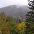Fall Colors!- Abiqua Falls