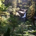 View of Horseshoe Falls from the trail. Incredible swim spot!- Siouxon Creek Hike
