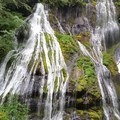 gorgous - Panther Creek Falls