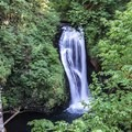 Lower Butte Creek Falls- Butte Creek Falls Hike