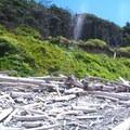 Kalaloch Beach + Rocks