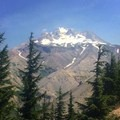 Paradise Park via Timberline Lodge