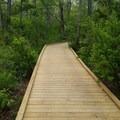 the boardwalk leading into the area- Crane Beach + Crane Wildlife Refuge