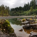 The Sandy River with moss covered rocks dotting the banks- Oxbow Regional Park