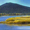 Lots of great wildlife viewing as well.- Oxbow Bend