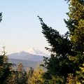 Mt  jefferson- Clear Lake Butte Lookout