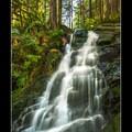8/2016- Siouxon Creek Hike