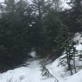 Silver Star Mountain via Grouse Vista Trailhead