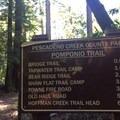 Tarwater Trail