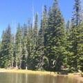 Matthieu Lakes