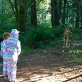 another friend wandered right up close- Oxbow Regional Park Campground