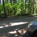 from the edge of our campsite to the path to the river- Oxbow Regional Park Campground