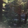 the river enterance from the campsite (fairly steep so be prepared)- Sunstrip Campground