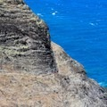 Crawlers Ledge- Kalalau Trail