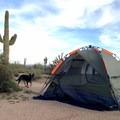 McDowell Mountain Campground