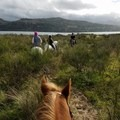 Riding the inlet.- Nehalem Bay State Park