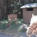 Lake Clakamas Campground.- Joe Graham Horse Camp