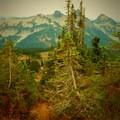 Skyline Trail Hike