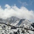 Honeycomb Cliffs- Willow Heights Snowshoe