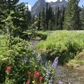 Lower meadow and Three Fingered Jack.- Canyon Creek Meadows