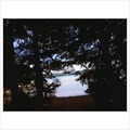 View of the lake from my hammock. - Timothy Lake, Meditation Point Campsites