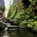 Approaching the log jam- Oneonta Gorge