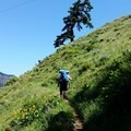 Mount Defiance Hike