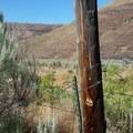 Cottonwood Canyon State Park