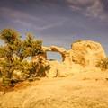 Window Arch- City of Rocks