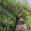 Stairway near the falls.- Bridal Veil Falls, Oregon