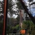 Cape Lookout State Park Campground