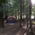 Site 43 (the lake is barely visible through the trees)- Trillium Lake Campground