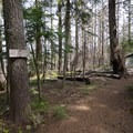 Take the right fork. The wilderness permits are up ahead.- Vista Ridge Trail Hike