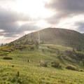 Carvers Gap to Grassy Ridge Bald