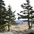 At the top of Grassy High Bald. - Carvers Gap to Grassy Ridge Bald