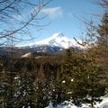 Our view from the trail of Mt. Hood.- Pocket Creek
