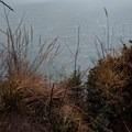 Near the top somewhere- Tillamook Head Hike