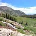 Mount Rose Summit Trail