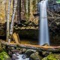 Hedge Creek Falls from in the creek. - Hedge Creek Falls