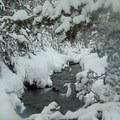 Winter of 2017- Tumalo Falls + Creek Hike