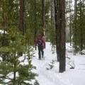 happy birthday snowshoe adventure- Swampy Lakes, Porcupine Snowshoe Loop