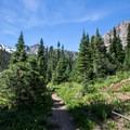The trail to Alpine + Sawtooth Lakes.- Alpine + Sawtooth Lakes, Iron Creek Drainage