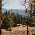 Peakin' peaks- Mueller State Park
