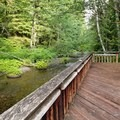 Interpretive trail- Lost Creek Campground