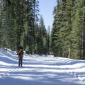X-country ski tracks available on both sides for about 80% of Glacier Point Road.- Glacier Point Cross-Country Ski