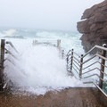 The waves were roaring just as much as Thunder Hole on this morning- Thunder Hole