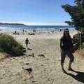 Chesterman Beach- Wya Point Resort Campground