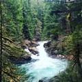Siouxon Creek Hike