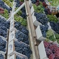 Visit the roadside stand to purchase grapes from the vineyard during the autumn. - Finger Lakes Trail: Mitchellsville Gorge
