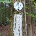 The FLT is indicated by white hash marks.- Finger Lakes Trail: Mitchellsville Gorge